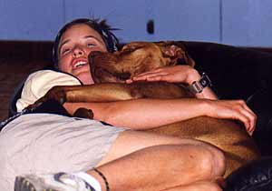 American pit bull terrier, American pit bull, pit bull terrier, pit bull, pitbull, pittbull, pitt bull, gamebred, American gamedog, game pit bull, K9, detection dogs, police dog, police dogs, detection dog, bomb dog, narcotics detection dog, explosives detection dog, Boldog Kennel, Diane Jessup, BSL, dog training, schutzhund, French ring sport, tracking, tracking dog, agility dog, weight pull, weight pulling pit bull, dog crate, pit bull books, pit bull book, dog training, dog fighting, Washington State Patrol, breed specific legislation, dog agility, gamedogs, game dogs, American gamedog, dog fighting, treadmills, jenni, catmill, springpole, weight pulling, dog aggression