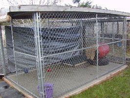 Chain Link Fence - Fences for Dogs | Dog Fencing Solutions
